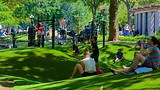 Washington Square Park - New York (en omgeving) - Tourism Media