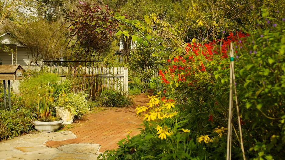 Harry P Leu Gardens In Orlando Florida Expedia