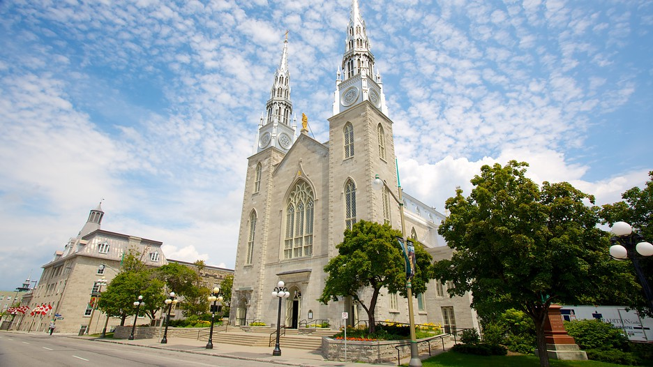 Notre Dame Cathedral Basilica In Ottawa Ontario Expedia Ca