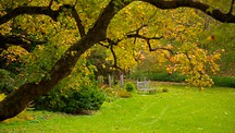Hotels Near Morris Arboretum Philadelphia
