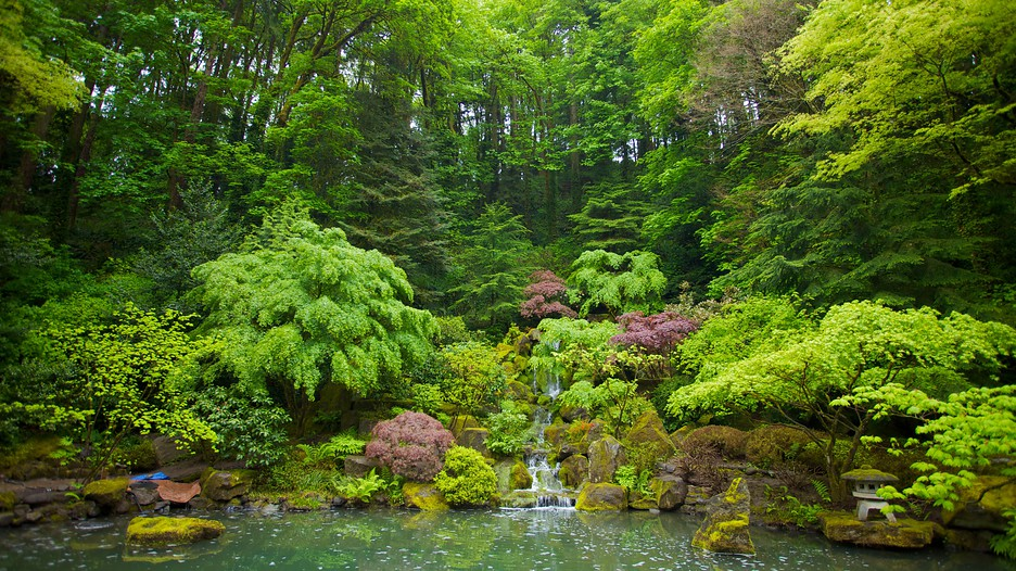Portland Japanese Garden in Portland Oregon | Expedia.ca