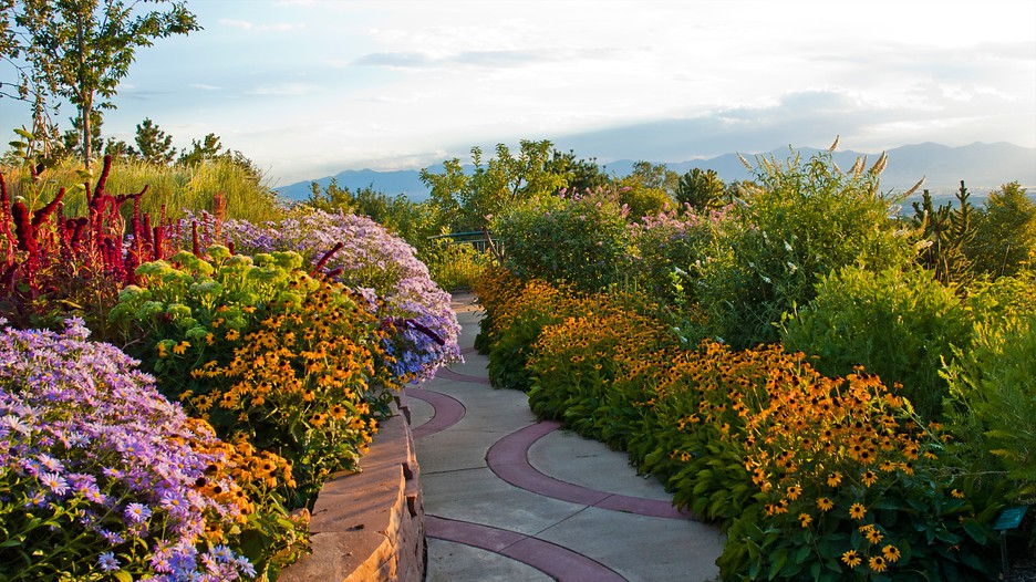 red butte garden and arboretum in salt lake city utah expedia