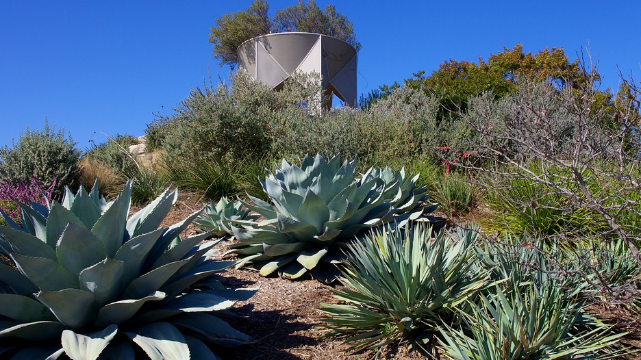 San Antonio Botanical Gardens San Antonio Texas Attraction