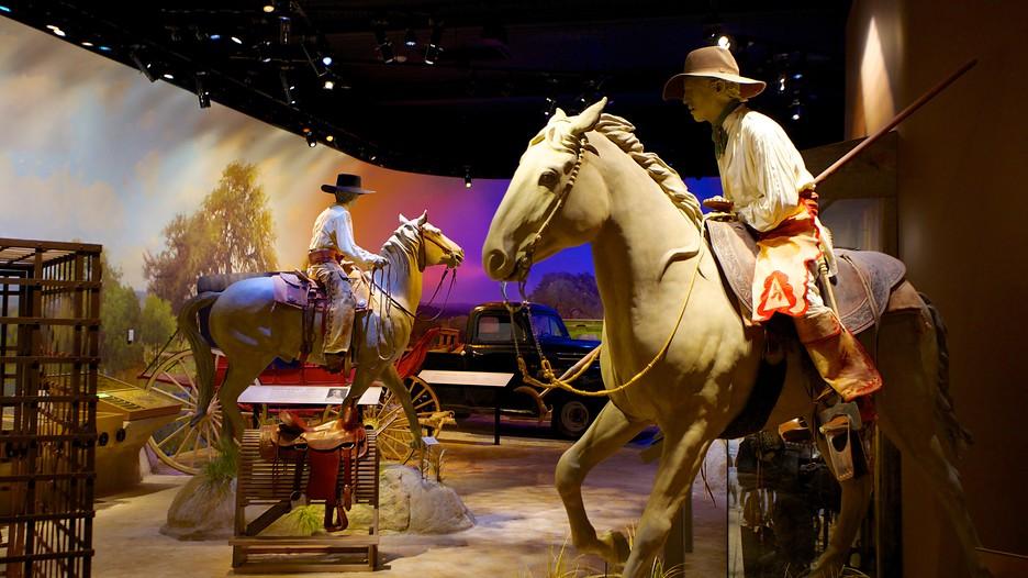 Witte Museum in San Antonio, Texas  Expedia