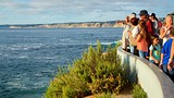 Showing item 40 of 48. La Jolla - San Diego County - Tourism Media