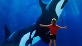 Seaworld - California Travel and Tourism Commission