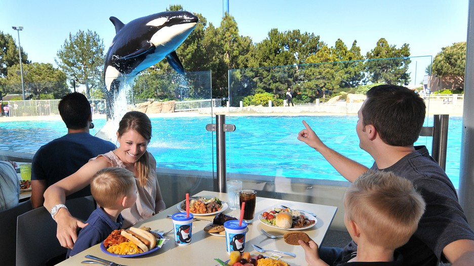 Seaworld In San Diego California Expedia