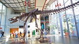 California Academy of Sciences - California - Tourism Media