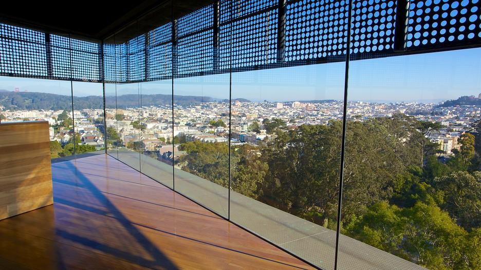 De young museum in san francisco california expedia for San francisco new museum
