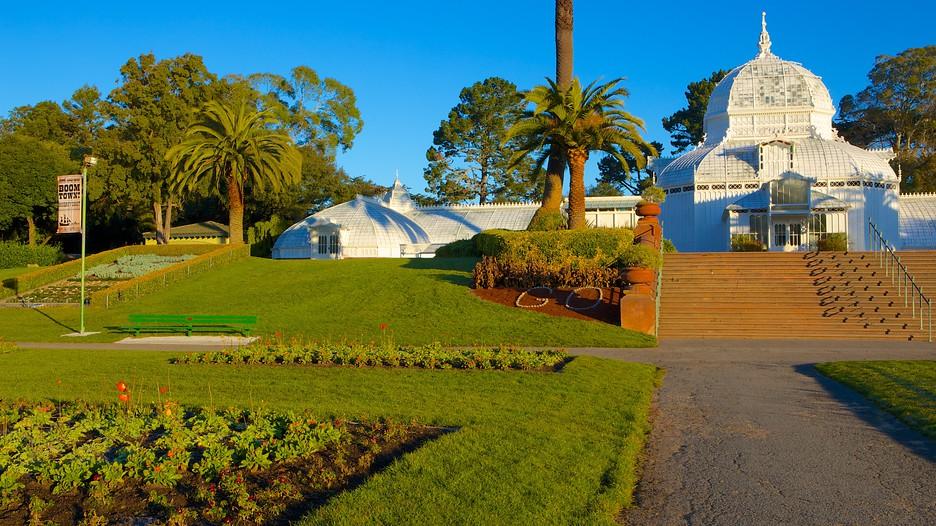 Image result for golden gate park