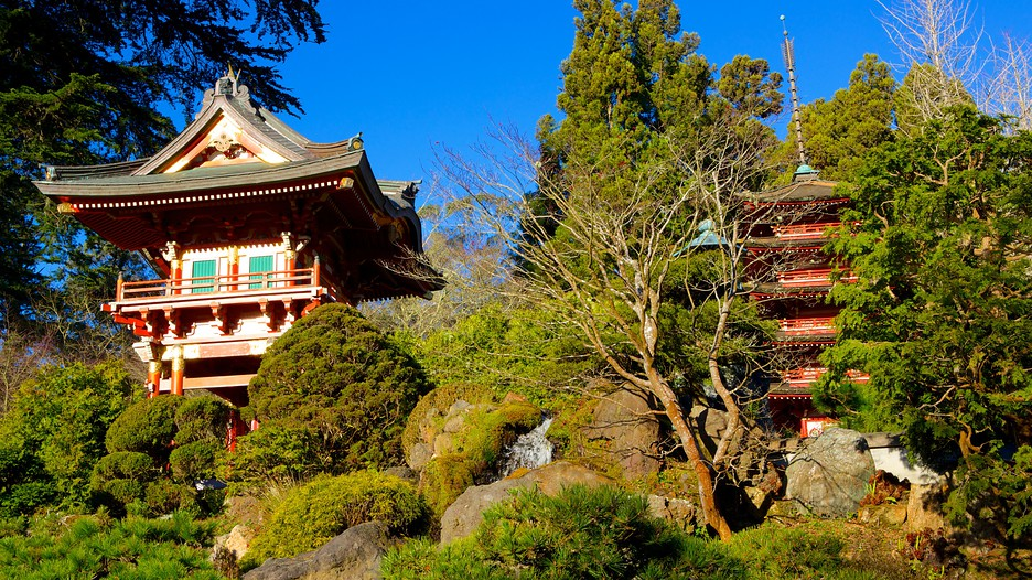 Japanese tea garden in san francisco california expedia - Japanese tea garden san francisco ...