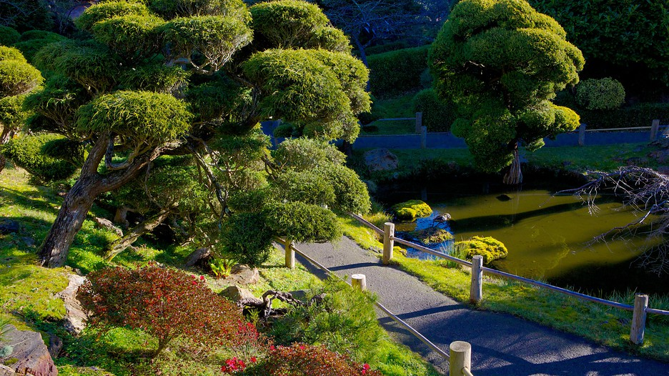 Japanese Tea Garden in San Francisco California Expedia