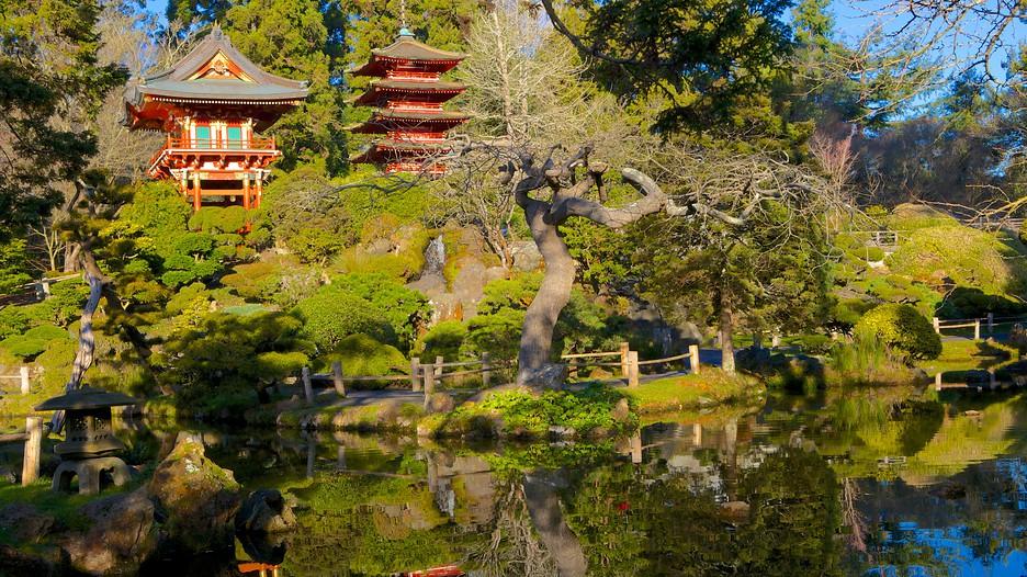 Japanese Tea Garden In San Francisco California