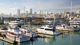 Showing item 54 of 91. Fisherman's Wharf, San Francisco, California, United States of America - San Francisco - Tourism Media