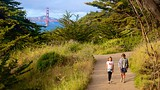 Showing item 57 of 91. Land's End Trail - San Francisco - Tourism Media