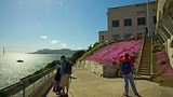 Showing item 23 of 91. Alcatraz Island - Tourism Media