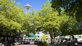 Belltown - Seattle - Tourism Media