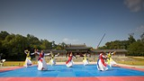 Gyeongbok Palace - Seoul - Tourism Media