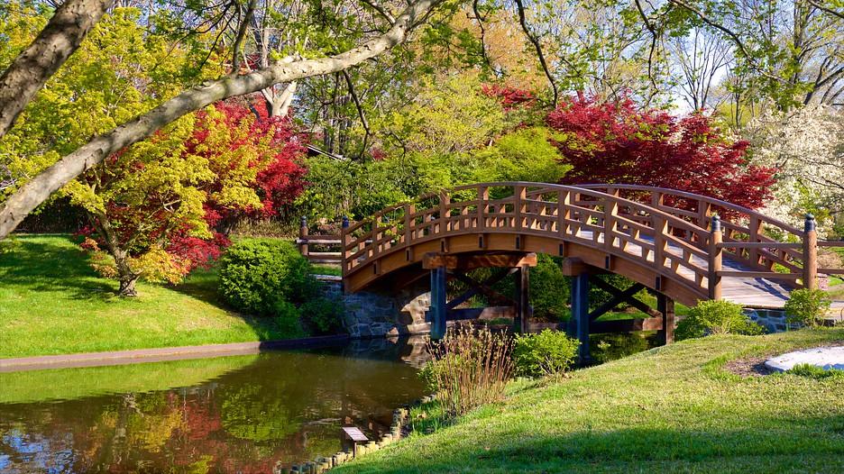 Missouri Botanical Garden Punti Di Interesse A St Louis Con