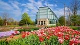 The Jewel Box - Forest Park - Tourism Media
