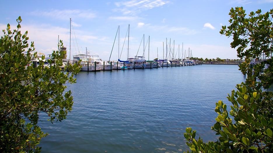 Demens Landing Park In St Petersburg Florida Expedia Ca
