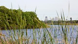 Boyd Hill Nature Park - St. Petersburg - Tourism Media
