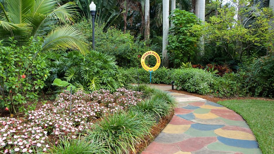 Sunken Gardens In St Petersburg Florida Expedia