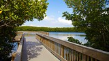 Weedon Island Preserve - St. Petersburg - Tourism Media