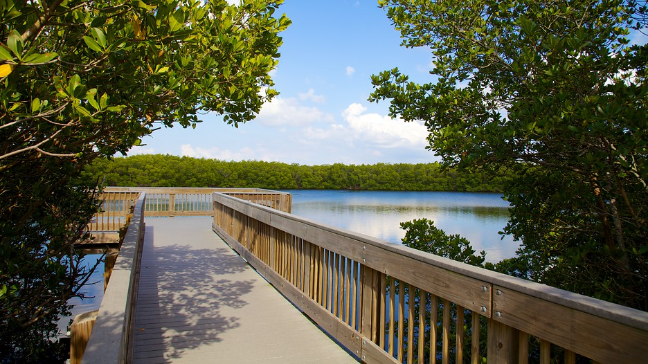 Weedon Island Preserve in St. Petersburg, Florida | Expedia