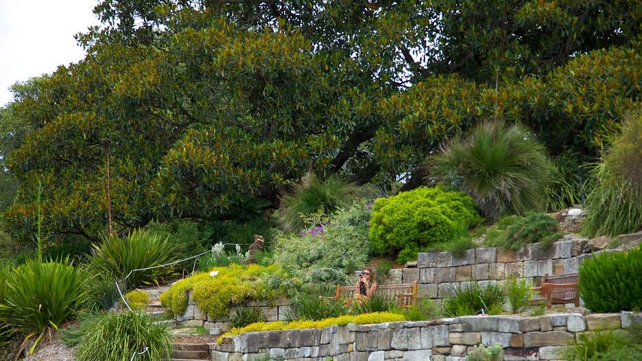 Royal Botanic Gardens In Sydney New South Wales