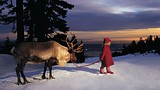Grouse Mountain - Vancouver - Tourism Vancouver
