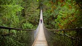 Lynn Canyon Park - Vancouver - Tourism Media