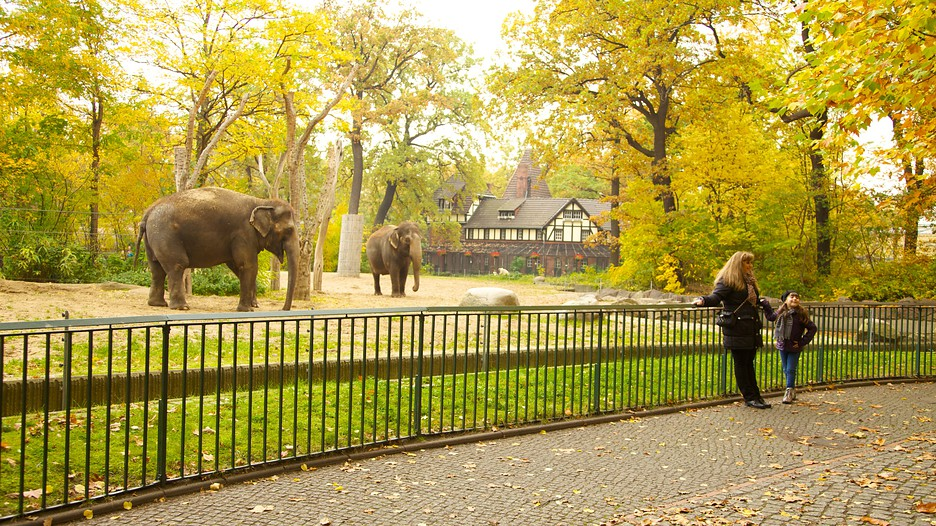 Berliner Zoo in Berlin - Expedia.de