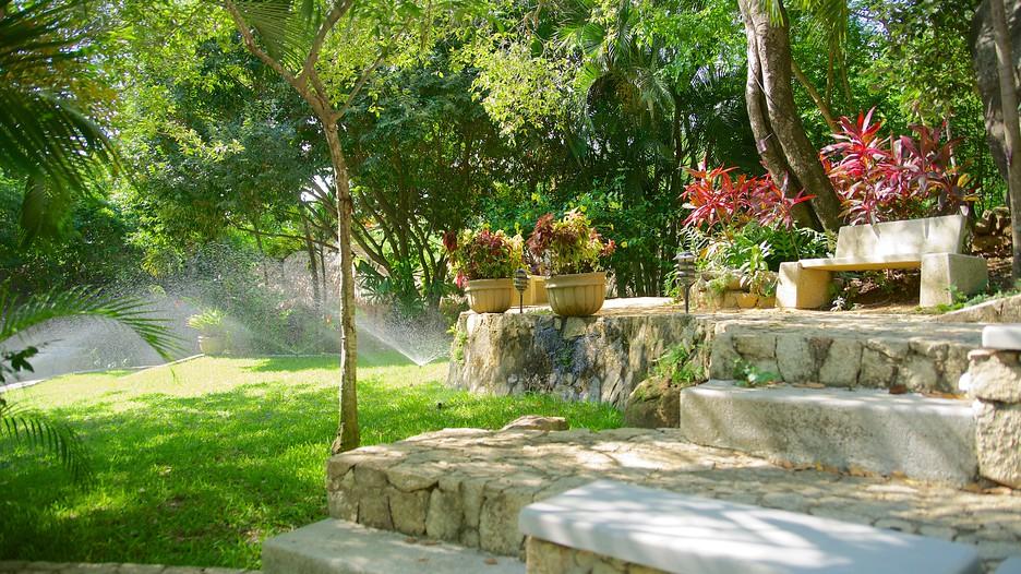 Botanical gardens of acapulco in acapulco guerrero for Hotel jardin botanico