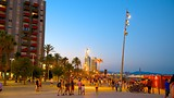 Showing item 6 of 25. Barceloneta Beach - Barcelona - Tourism Media
