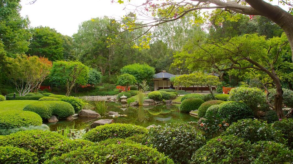 Brisbane Botanic Gardens Brisbane Queensland Attraction