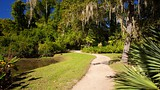 Middleton Place - Charleston (et environs) - Tourism Media