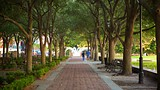 Waterfront Park - Charleston (et environs) - Tourism Media