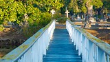 Magnolia Cemetery - Charleston - Tourism Media