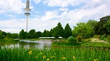 Botanical Gardens - Hamburg - Tourism Media