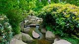Japanese Garden - Hamburg - Tourism Media