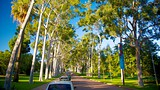 Kings Park and Botanic Garden - Perth - Tourism Media