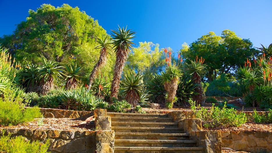 kings park und botanischer garten in perth - expedia.de,