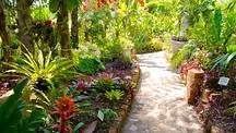 Malecon in puerto vallarta jalisco expedia - Puerto vallarta botanical gardens ...