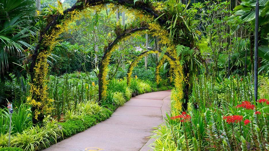 Jardins botaniques de singapour singapour for Au jardin restaurant singapore botanic gardens