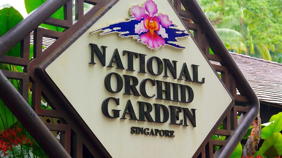 Jardins botaniques de singapour d couvrez singapour avec for Au jardin les amis singapore botanic gardens