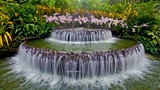 Showing item 40 of 50. Singapore Botanic Gardens - Singapore - Tourism Media