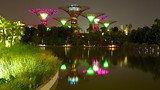 Showing item 9 of 50. Gardens by the Bay - Singapore - Tourism Media