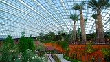 Showing item 49 of 50. Gardens by the Bay - Singapore - Tourism Media