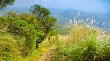 Yangmingshan National Park - Taipei - Tourism Media
